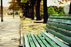 C'mon, have a seat. (Lara Baquil) Tags: park street parque trees green beautiful riodejaneiro canon relax 50mm cool pretty bokeh f14 auttumn quintadaboavista