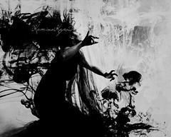 She summons herself (flish kamina) Tags: reflection nature control haiku magic innerspace surrender summon vision:car=0639 vision:outdoor=0769 vision:sky=0779