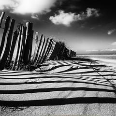 Beach (a.penny) Tags: beach strand square fuji finepix fujifilm 1x1 quadrat x10 500x500 apenny