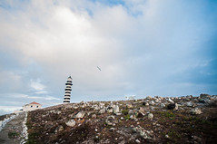 20120906-_DSC3152 (Paula Marina) Tags: brazil lighthouse nature birds brasil islands barco natureza bahia ba farol humpback praias whalewatching oceano ilhas catamar abrolhos atlntico suldabahia arquiplago