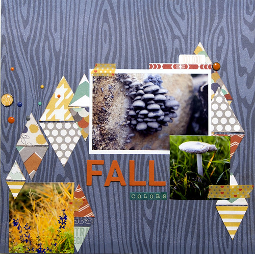 FALL COLORS-SKA 79