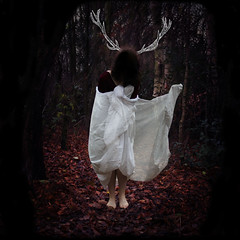 Oblivion. (CieraWilsonPhotography) Tags: trees winter red wild portrait colour tree art fall nature girl leaves animals self canon vintage dark square rust fine free deer flux squareformat difference sheet division pure isolated metaphorical renew evolve darkart bluecoat edgelands