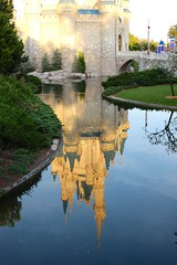 Reflecting in the Beauty of the Castle