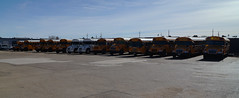 Blue Star Bus Sales Bus Lineup (sj3mark) Tags: vision bluebird schoolbus tc2000 activitybus bluestarbussales