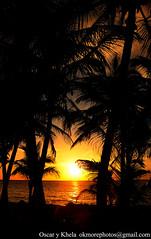 Palm Trees at Sunrise (Ok More Photos) Tags: light sunset shadow sun seascape colors backlight sunrise landscape mexico atardecer rising dawn lights early shadows sundown alba tulum paisaje palmeras mexican amanecer palmtrees diamantek palmtree aurora caribbean backlit dawning paysage palmera sunup palmiers palmier backlighting daybreak coucherdesoleil aurore caribe waterscape newday aube alborada crackofdawn caraibes breakofday cockrow