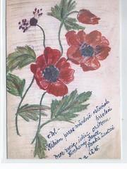 Lwow / Lvov Poland Jewish Artist Irena Peritz Holocaust 10880 (stephaniecomfort) Tags: art holocaust poland jewish lvov ghetto janka lwow peritz boryslaw