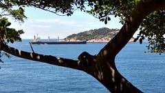 por entre as sombras (luyunes) Tags: riodejaneiro praiavermelha navio barco carga embarcação motoz luciayunes