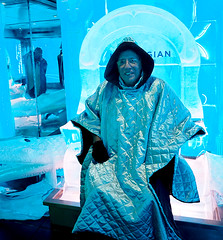Ice Bar -12 (KathyCat102) Tags: ncl getaway cruise ship icebar