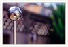 the world wide (chickentender™ (Eyewanders Foto)) Tags: pentaxusually bigtrip eyewandersfoto film k7 newzealand wellingtonmostly