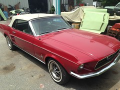"""1967 Ford Mustang Convertible • <a style=""""font-size:0.8em;"""" href=""""http://www.flickr.com/photos/85572005@N00/32751316324/"""" target=""""_blank"""">View on Flickr</a>"""