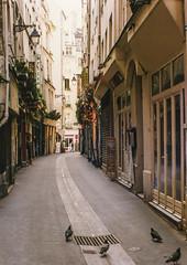 Paryż-uliczka (marek&anna) Tags: france paris alley building pigeons