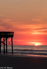 Rising from the sea (Ronda Hamm) Tags: sillouette landscape southcarolina pier birds isleofpalms canon orange waves sun beach ocean boardwalk perch canon7dii sea color sunrise 70200mm sky