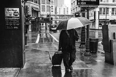 Mr. Gloom (R*Wozniak) Tags: blackandwhite urbanscene rain street city citylife umbrella walking men people business buildingexterior downtowndistrict sidewalk oneperson builtstructure store outdoors bw nikond750 nikon 35mm