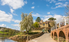 Arley Ferry Landing.......No More (williamrandle) Tags: bluesky clouds arley village uk worcestershire england spring 2017 river riversevern water reflections ferrycrossing trees green blue arch structure brick stone riverbank building road beauty bench outdoor landscape nikon d7100 sigma1835f18art