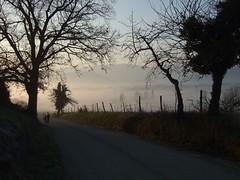 15 février 2008   en partant à l'école... (Dust.....) Tags: nature paysage lumiere nuage nuages photodepaysage landscape paisaje comminges kommingisthan komingisthan automne brume brumes brouillard enfants