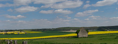 The little house on the prairie (JULIEN VI) Tags: maison abandoned alone perche nikond3300 nikon55mmmicronikkorf28 landscape paysage clouds nuages champs fields abandonnée house campagne countryside france panorama jaune colza yellow prairie meadow ruines