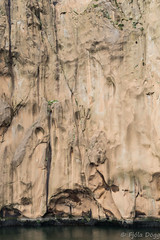 Westman island (Fjola Dogg) Tags: 2015 canon canonpowershotg7x evropa fjoladogg fjóladögg iceland islandia vestmannaeyjar europe eyjar island westmanisland ísland islande islanti islândia islann islanda izlanda izland ijsland islando lislande lanature landscape ãsland nature náttúra naturaleza natur natura naturae natuur naturen naturalesa natureza nopeople