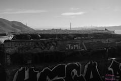 DSC05557 (intothesierra) Tags: rodeobeach marincounty goldengatebridge friendship ocean sanfrancisco roadtrip graffiti life