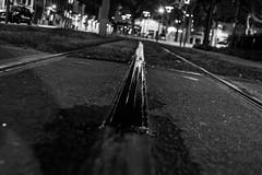 Rue 20_04_2017 (8 sur 34) (Jérôme Loche) Tags: photographie de rue life bordeaux france gironde vie noir et blanc couleur nb aquitaine personne inconnue femme homme jeune couché soliel bus passage piétons fleur rembarde barrière arbre pigeon moto velo poubelle déchets tramway rails nuit jour peintre envol route scooter pomme ruine portrait flou