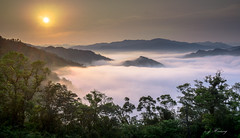 sea of clouds (canon-Tom) Tags: clouds sky sun sunrise sunset sunlight light lanscape nature travel tree mountains fog mist morning dawn city sea taiwan taipei
