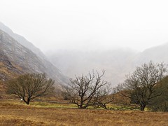 8545 Corrie in the mist (Andy - Busyyyyyyyyy) Tags: 20170318 ccc clouds day9 mist mmm morvern scotland