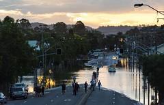 Lismore floods 3-4 / 2017 (dustaway) Tags: lismorefloodmarchapril2017 ballinaroad lismore northernrivers nsw australia naturaldisasters flooding flood autumn lateafternoon australianweather brownscreek floodwater australiafloods excyclonedebbie cyclonedebbie documentary