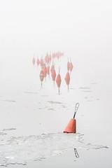 Buoys Midst Mist (pni) Tags: fog mist water buoy sea ice helsinki helsingfors finland suomi pekkanikrus skrubu pni