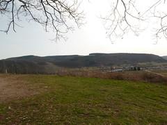 P1030141 (Unterwegs im Trierer Land) Tags: kanzem wiltingen saarbogen
