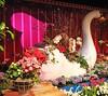 Macy's Flower Show (Brule Laker) Tags: chicago illinois flowers macys marshallfields downtown olympusom