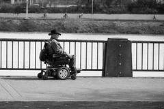 Riverside Race (RaminN) Tags: man wheelchair willametteriver bicycle cyclist rail guard waterfront portland oregon