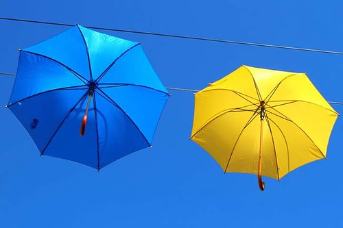 Paraplu's in Lelystad