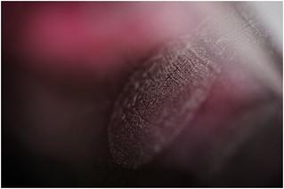 Macro Mondays (Option) - Crime - Fingerprint