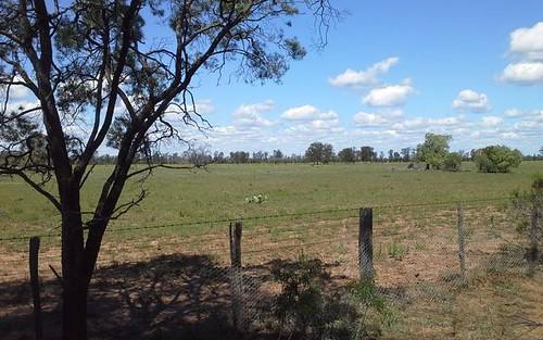 HD Creek Rd, Pilliga NSW 2388