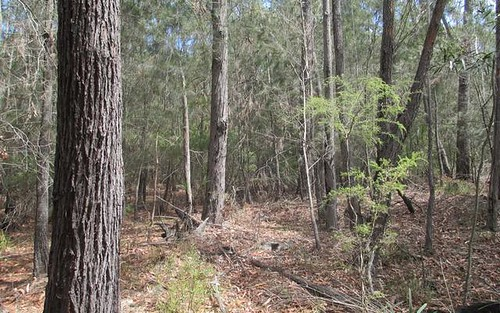 Lot 16 Percy Davis Drive, Moruya NSW