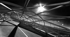 The fishnet stocking, monochrome. (PvRFotografie) Tags: nederland holland rotterdam rotterdamzuid rotterdamcharlois monochrome zwartwit blackandwhite blackwhite architectuur architecture modern sonyilca99m2 12mm 1224mm sigma1224mm sigma12244556 leesw150 leesw150polarizer