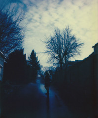 weathering the storm (Lisa Toboz) Tags: impossibleproject instantfilm polaroid pittsburgh dormont shadowsandlight spectrasystem polaroidweek2017 afterthestorm jody