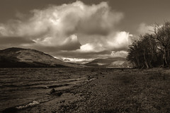 on the banks of Lochearn (johnny_9956) Tags: sepia water lake loch scotland canon outside outdoor trees hills highlands