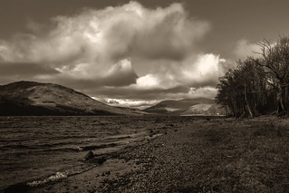 on the banks of Lochearn