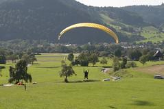 Gleitschirmflieger-Landeplatz (Speierling93) Tags: gleitschirmfliegen heimeck kollnau landeplatz waldkirch