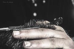 (vanessa_b._fotografie) Tags: haare schere nikon d3200 business haarschnitt schneiden germany deutschland nyc newyorkcity tiefenschärfe macro makro photography photo pic picture moment photographer fotograf liebe tags hinzufügen beta glitter effects night sky bokeh brushes golden lights scrambled letters floating dust bubbles obst flower blume outdoor natur blüte new neu day schön schwarz zweifarbig pflanze garden still licht light wind luft träume dream wunder wounder sonne sun reflextion beautiful zeit zeitlos