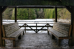 Rice Lake - North Vancouver, Canada (The Web Ninja) Tags: lowermainland canada travel travelphotography travelling photo photography photograph bc british columbia explore explorebc canon canon70d lynncanyon lynnvalley northvan northvancouver northvancity lynn canyon mountains mountain nature landscape green mtseymour mountseymour ricelake rice lake seat seating seats bench peaceful relax frozenlake frozen ice