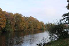 201 (AO'Brien) Tags: arklow autumn wicklow