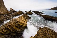 DSC00037 (eddyizm) Tags: a100 alpha california camping coast eddyizm eduardocervantes morrobay ocean pacific sony waves
