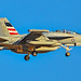 168375 EA-18G Growler Electronic Attack Squadron 140 (VAQ-140)