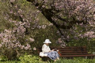 A Spring Day - HBM!