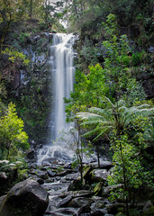 Let your cares fall away... (ImagesByLin) Tags: erskinefalls greatoceanroad lorne otwayranges victoria cascading forest lush treeferns water waterfall beauty beautiful peaceful