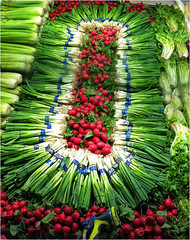 Red, White and Green (Bruce Shapka) Tags: vegetables celery radish onion red white green iphone4s