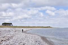 Fornæs Strand (Mr.Borup) Tags: strand sten hav himmel beach stones sea sky