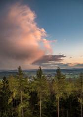 Schauspiel (matthias_oberlausitz) Tags: sonnenuntergang wolke regen april wetter unwetter bieleboh bäume turm aussicht oberlausitz beiersdorf