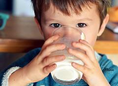 gouter (Nine de la yaute) Tags: aliment enfant nature lifestyle lait regard enfance